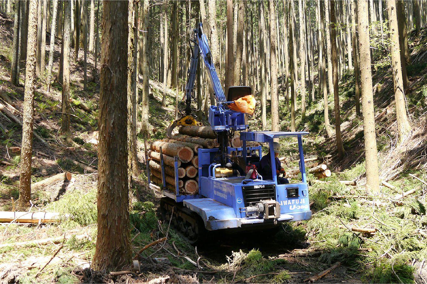 重機で木を運んでいる写真