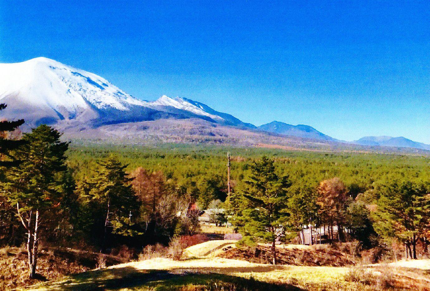 山と森の風景写真