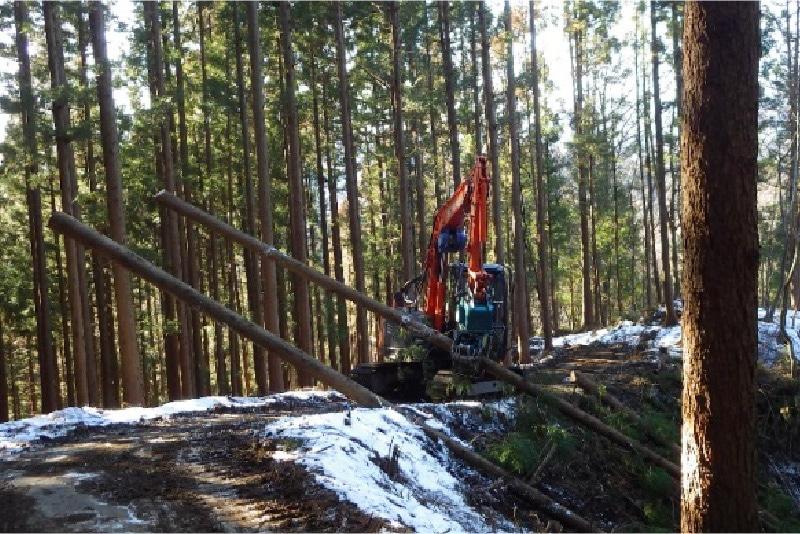 重機で木を持ち上げている写真